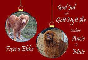 God Jul, Ancie & Mats!