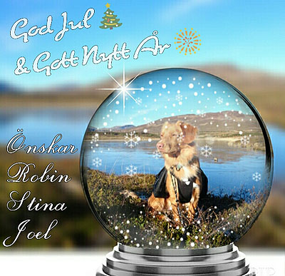 God Jul, Stina & Robin!